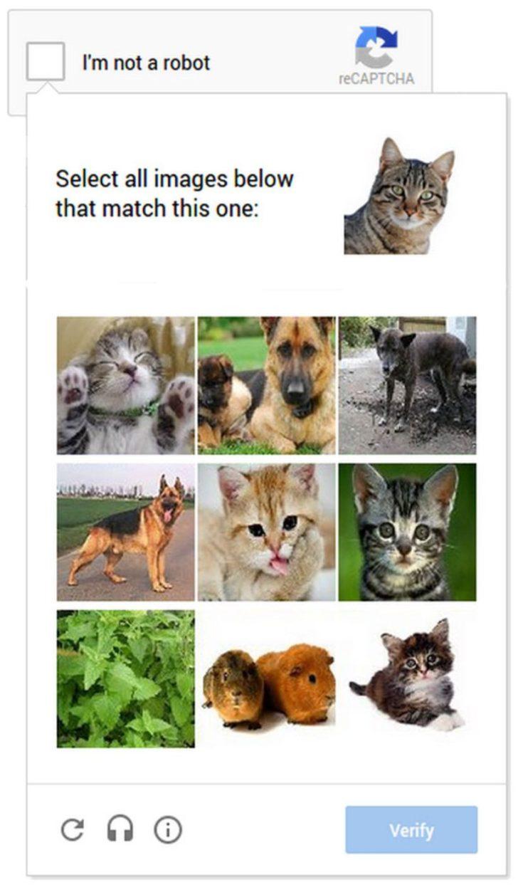 Riconoscimento fotografico per eliminare bot e spam da Google Analytics
